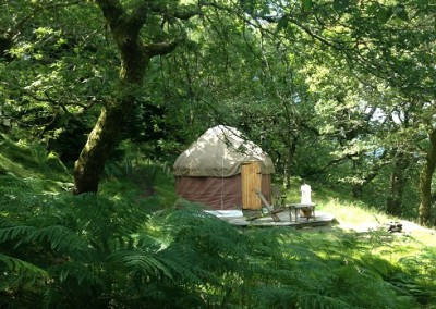 Yurt for two in trees