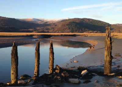 jetty on mawddach trail