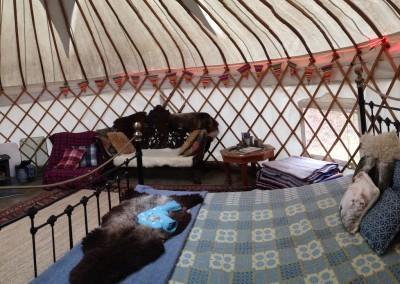 Large Yurts At Graig Wen