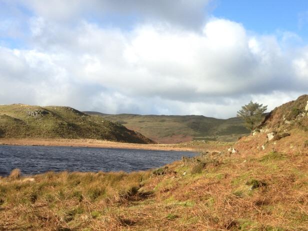 Walk to Llyn Barfog – the Bearded Lake