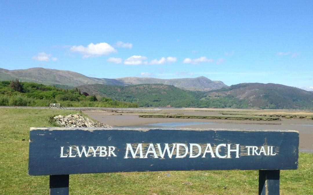 Explore the Mawddach Trail