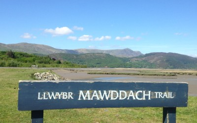 Explore the Mawddach Trail