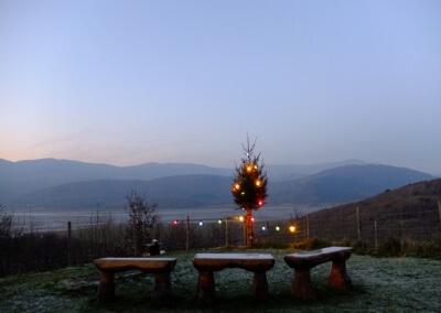 Christmas at Graig Wen