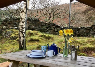 Spring in the yurts