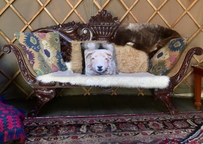 Comfy furnishings