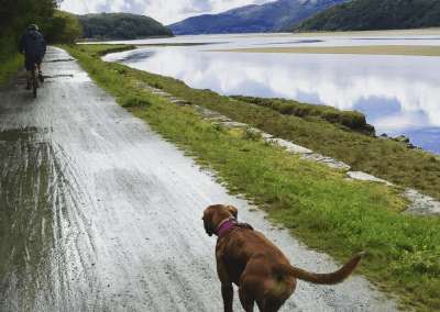 Running on the Mawddach Trail PHOTO BY @jguenier17