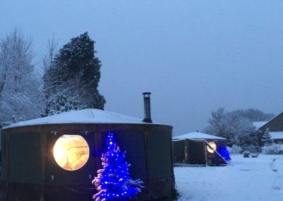 Festive yurts