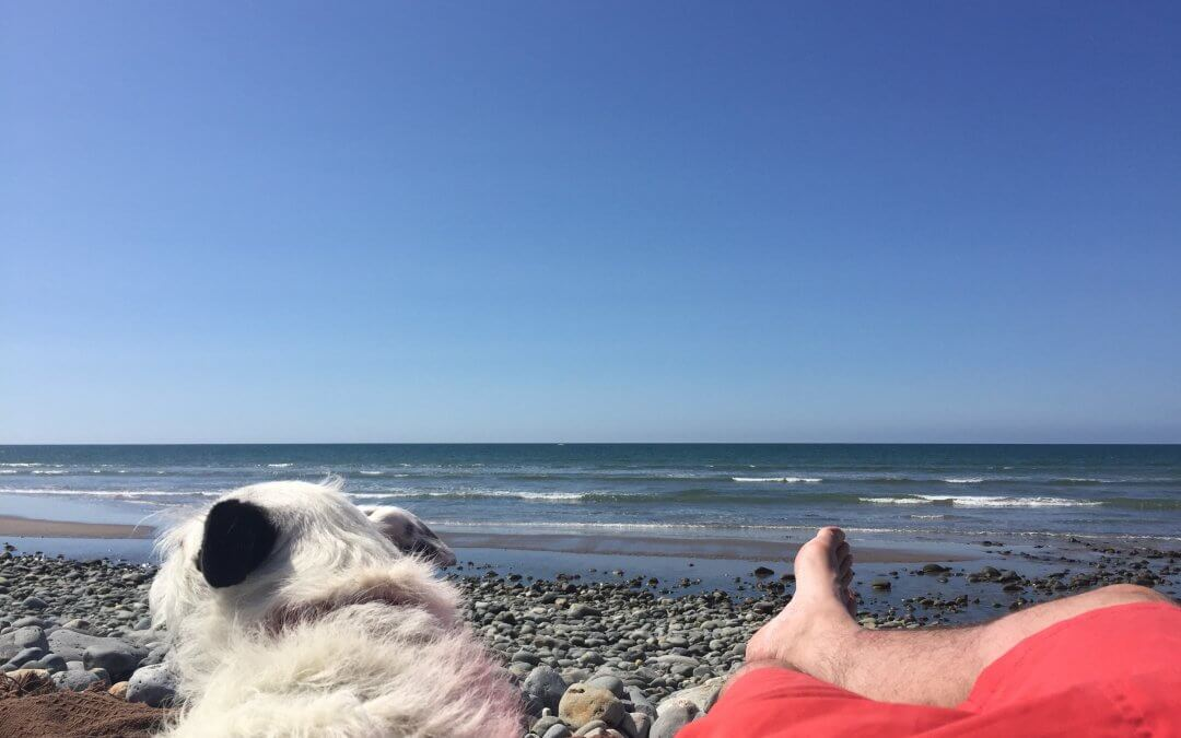 Tips for easy dog friendly holidays in Snowdonia