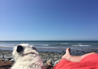 Close to the coast with dog friendly beaches
