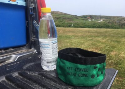 Travel water bowl is handy out walking