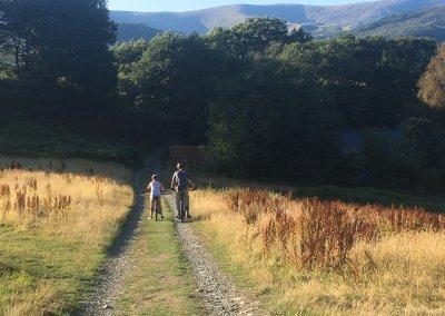 Take bikes down the track to the Mawddach Trail