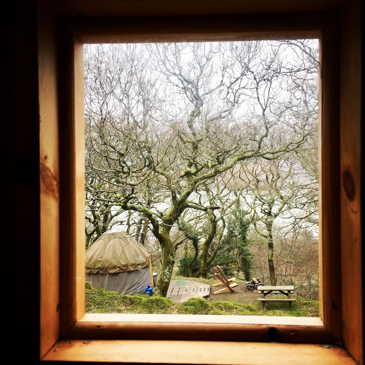 View of Small yurt from the compost loo!