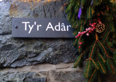 Festive Ty'r Adar