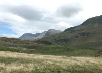 Cader and uplands