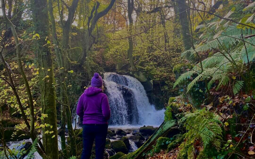 Explore walks from Graig Wen