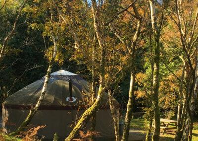Autumn glamping at Graig Wen